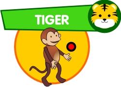 Coordination - Tiger challenge